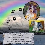 Sue Larson's Cloudy