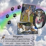Cathy Toft's Megan