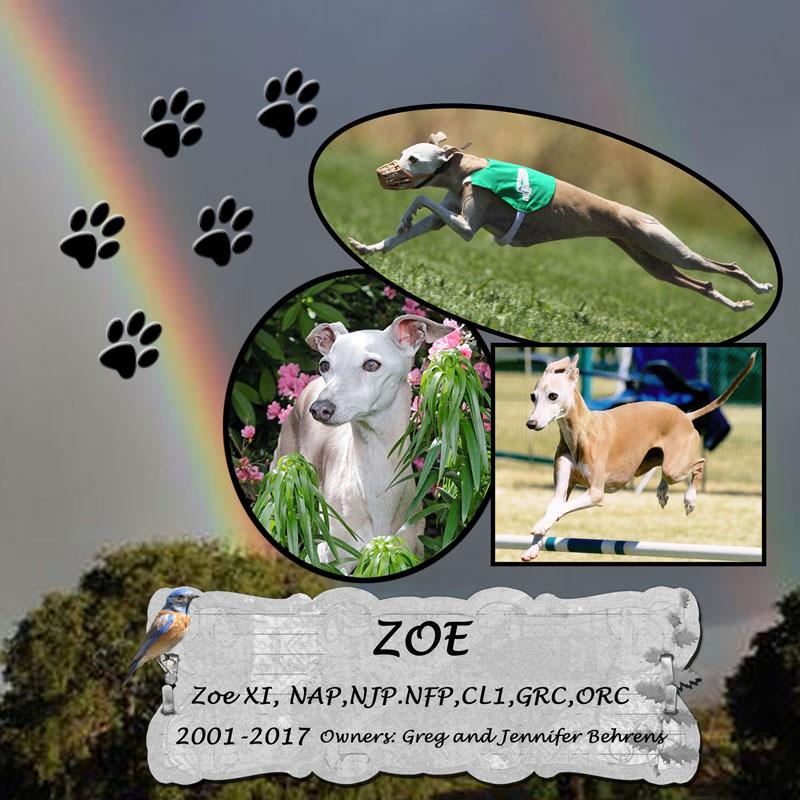 Zoe_Jenn_Behrens_2017