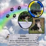 Nikki-150x150